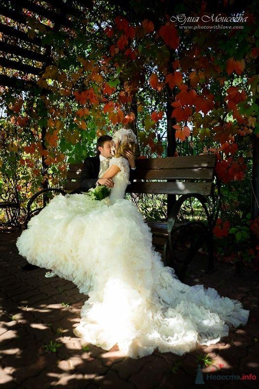 Красивое свадебное фото - фото 62541 Свадебный фотограф Моисеева Юлия