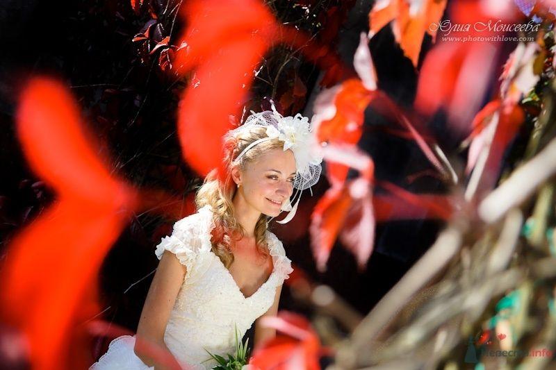 яркие свадебные фотографии