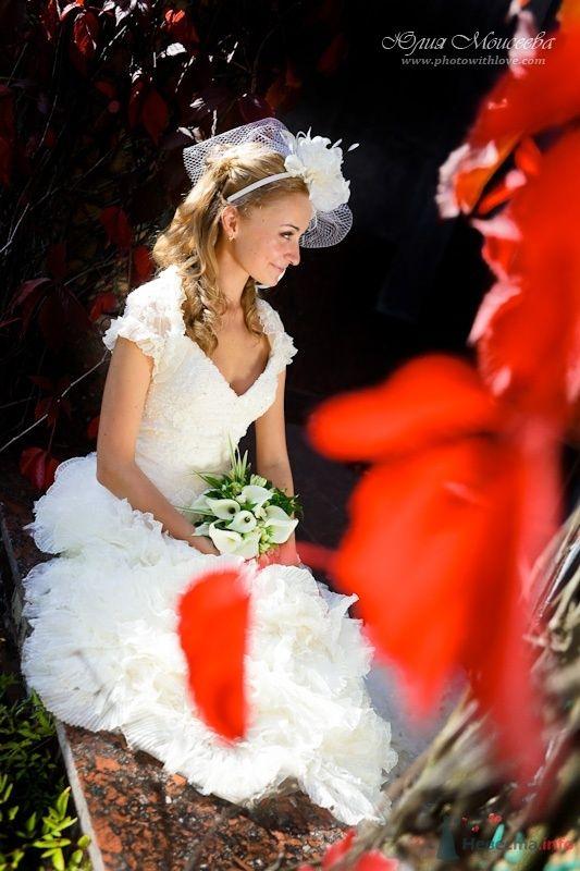 Лучшие свадебные фотографии - фото 62547 Свадебный фотограф Моисеева Юлия