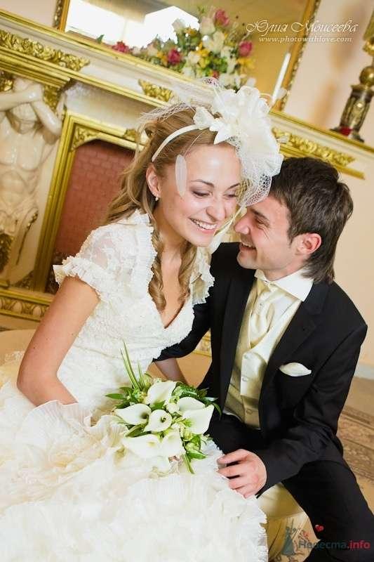 загс в пушкино - фото 62560 Свадебный фотограф Моисеева Юлия