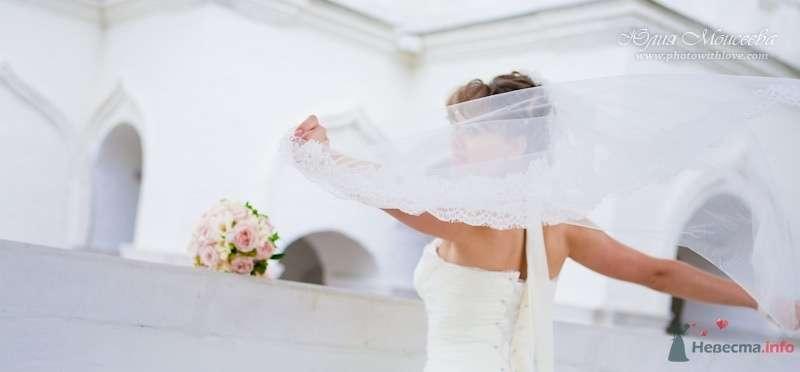 Фото 62583 в коллекции Свадьба Евгения и Ксении в Коломенском - Свадебный фотограф Моисеева Юлия
