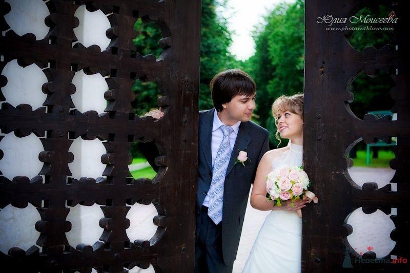 свадебные фотоистории - фото 62593 Свадебный фотограф Моисеева Юлия