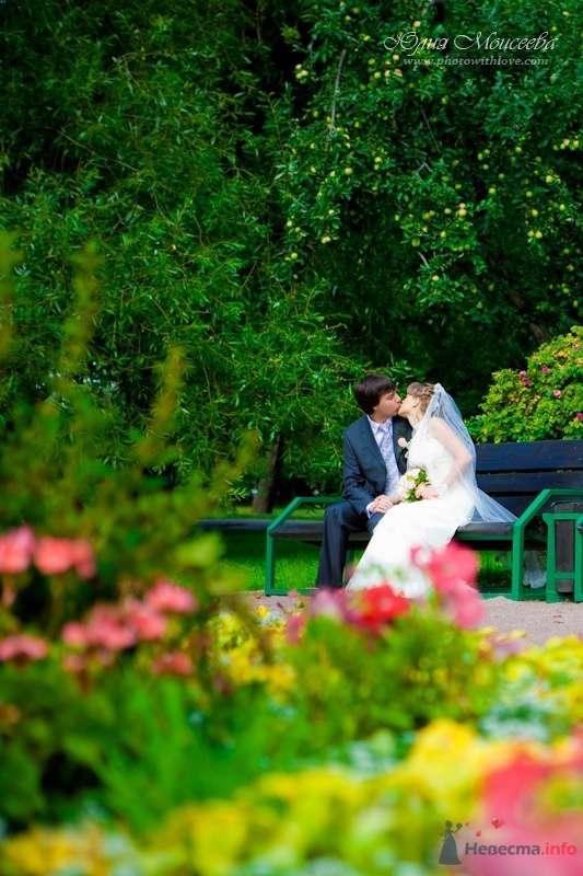 фото влюбленных - фото 62598 Свадебный фотограф Моисеева Юлия