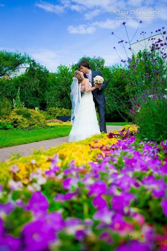 Фото 62614 в коллекции Мои фотографии - Свадебный фотограф Моисеева Юлия