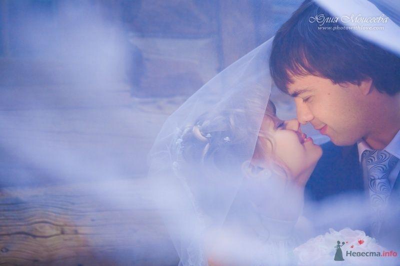 Фото 62625 в коллекции Мои фотографии - Свадебный фотограф Моисеева Юлия