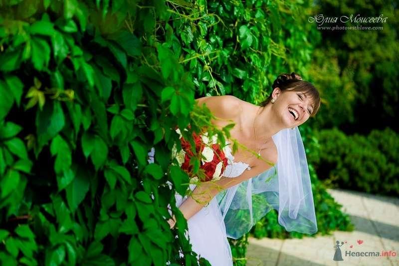 Фото 66616 в коллекции Мои фотографии - Свадебный фотограф Моисеева Юлия