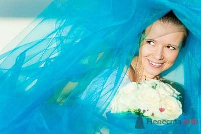 Фото 73446 в коллекции Мои фотографии - Свадебный фотограф Моисеева Юлия