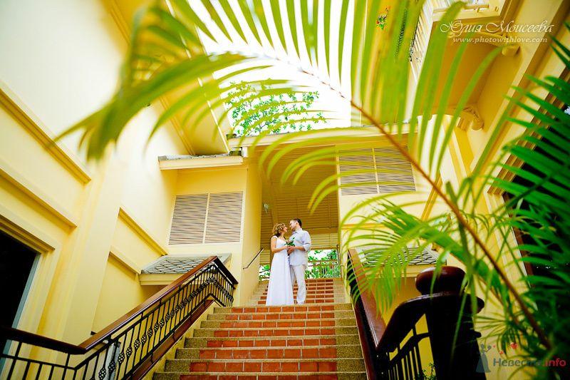 свадьба за границей - фото 80344 Свадебный фотограф Моисеева Юлия