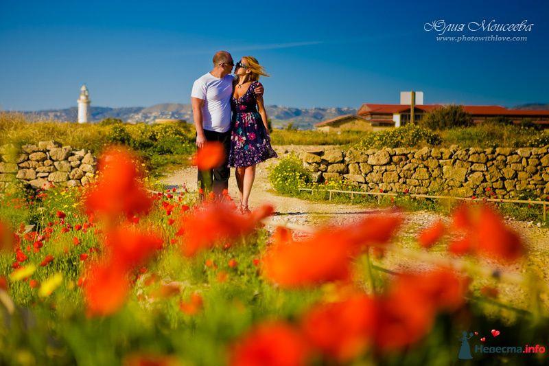 Фото 92280 в коллекции Свадьба на Кипре - Свадебный фотограф Моисеева Юлия