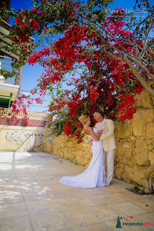 Свадьба на кипре - фото 95818 Свадебный фотограф Моисеева Юлия