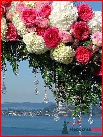 Фото 118373 в коллекции Мои фотографии - Свадебный фотограф Моисеева Юлия