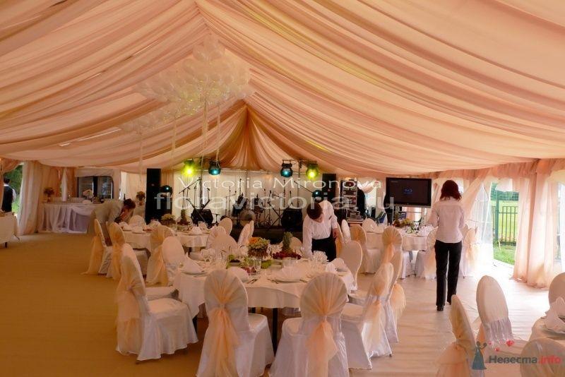 Свадьба.Драпировка и оформление шатра - фото 29415 Cвадебная флористика и декор событий FloraVictoria