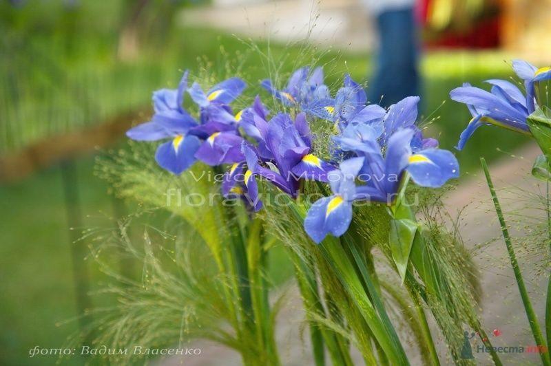 Цветочные композиции - фото 29423 Cвадебная флористика и декор событий FloraVictoria