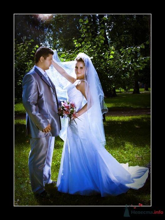 Фото 35784 в коллекции Свадьба Ирины и Алишера