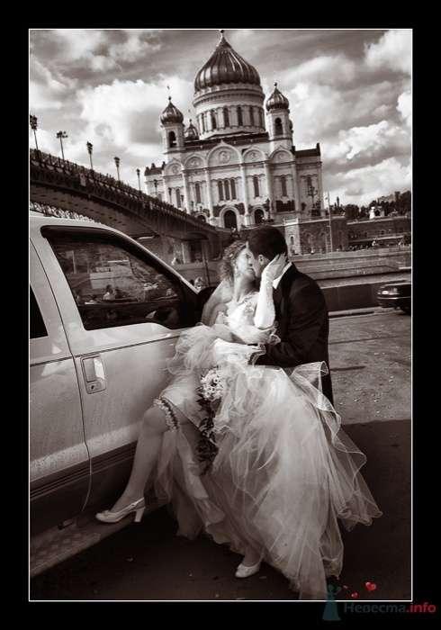 Фото 52295 в коллекции Татьяна и Андрей - Фотограф Вилена Экон
