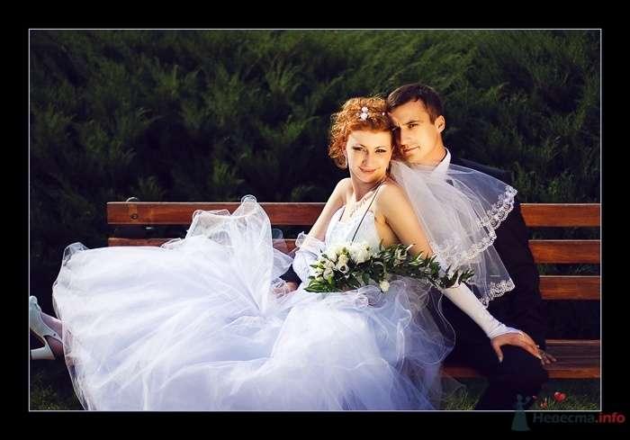 Фото 52296 в коллекции Татьяна и Андрей - Фотограф Вилена Экон