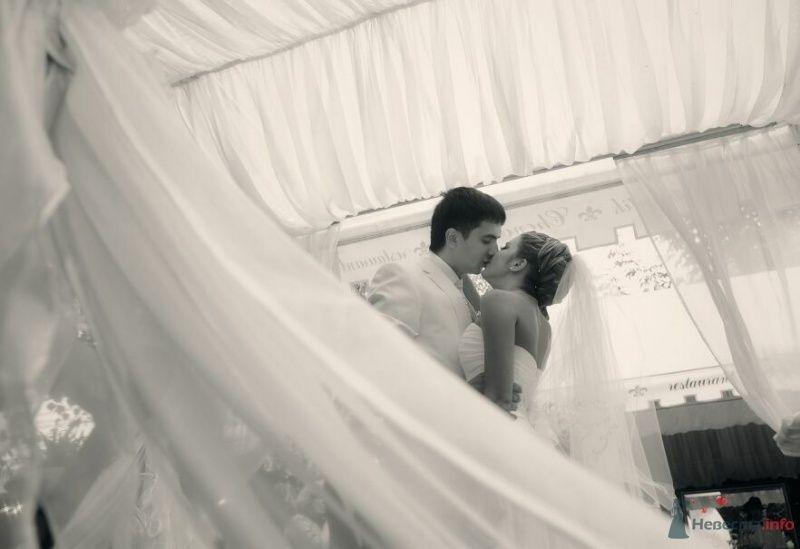 Фото 53035 в коллекции свадьба... - AngeLady