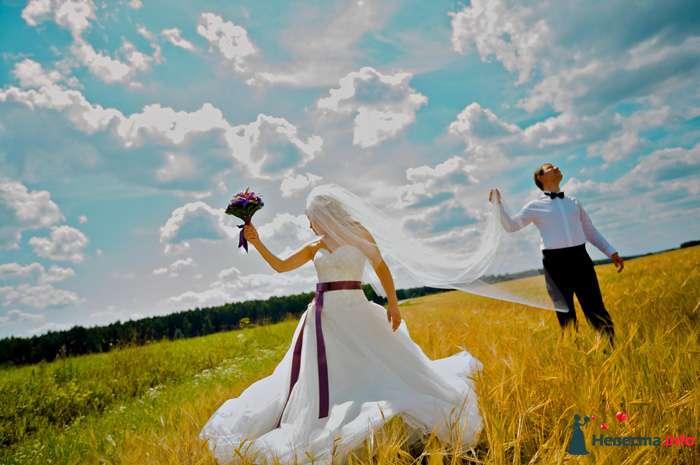 Жених и невеста стоят в пшеничном поле на фоне облачного неба - фото 98422 fely