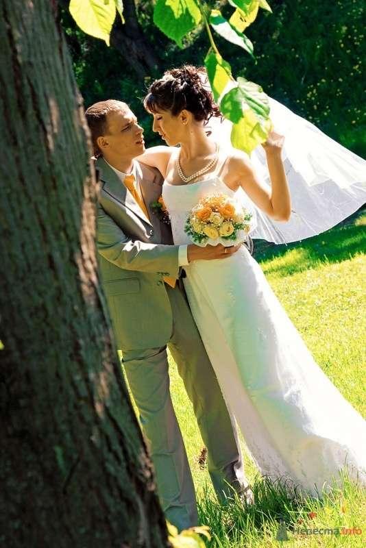 Фото 38221 в коллекции Свадьба - anyuta-ma