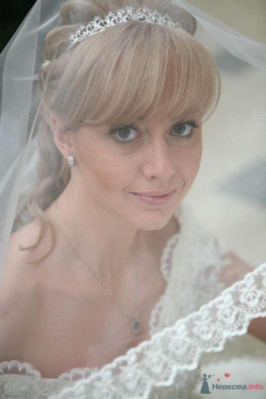 Фото 61434 в коллекции Наша свадьба 31.10.09 - alena_kis