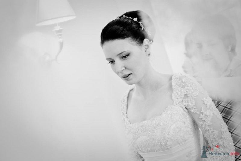 Фото 53701 в коллекции свадьба-фотограф елена кузнецова - ларина т