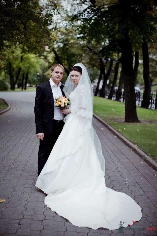 Фото 53709 в коллекции свадьба-фотограф елена кузнецова - ларина т