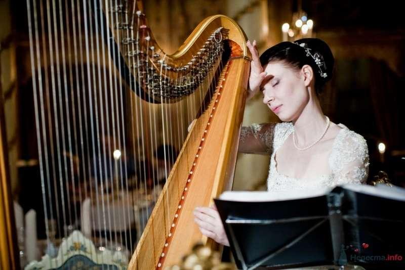 Невеста сидит в зале возле арфы - фото 53725 ларина т