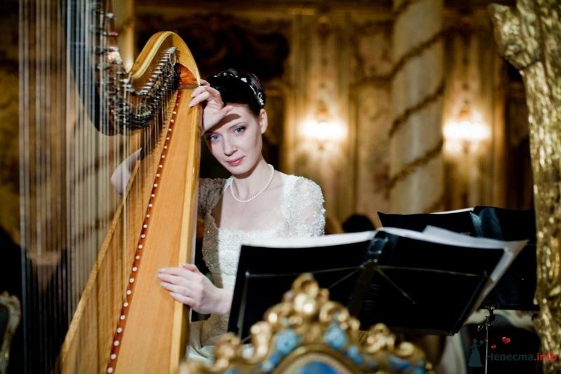 Фото 53726 в коллекции свадьба-фотограф елена кузнецова - ларина т