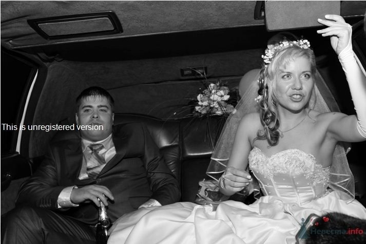 "как назвал фото муж - ""Гарсон"" :) - фото 64090 Лёлечк@"