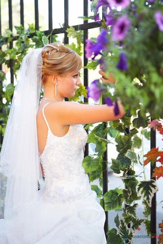 Фото 52364 в коллекции Наша большая европейская свадьба ))) 12.07.09 - Мissis Kейт