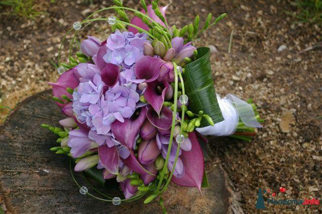 Букет невесті из гортензий, калл, фрезий и тюльпанов в сиреневых тонах - фото 116858 iskorka
