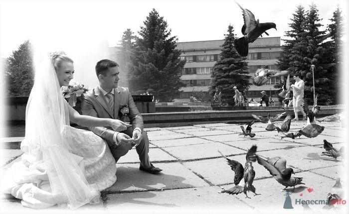 Фото 39916 в коллекции Наша свадьба - Kyzmich