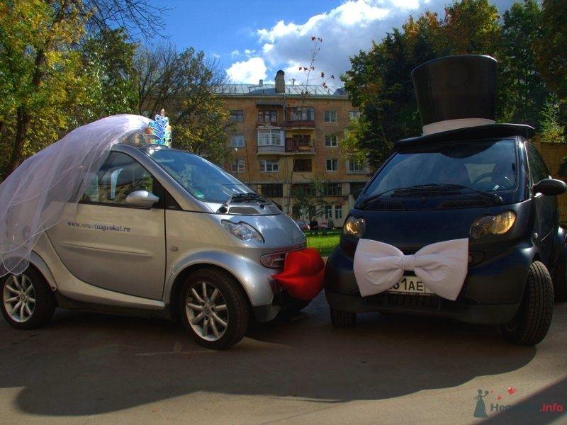 Фото 42377 в коллекции Ваша свадьба может выглядеть так... - Smartnaprokat - свадебный кортеж