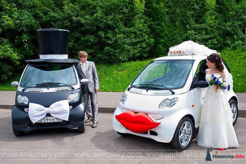 красивые пары - фото 113955 Smartnaprokat - свадебный кортеж