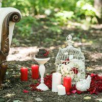 Оформление свадебной фотосессии в красном цвете