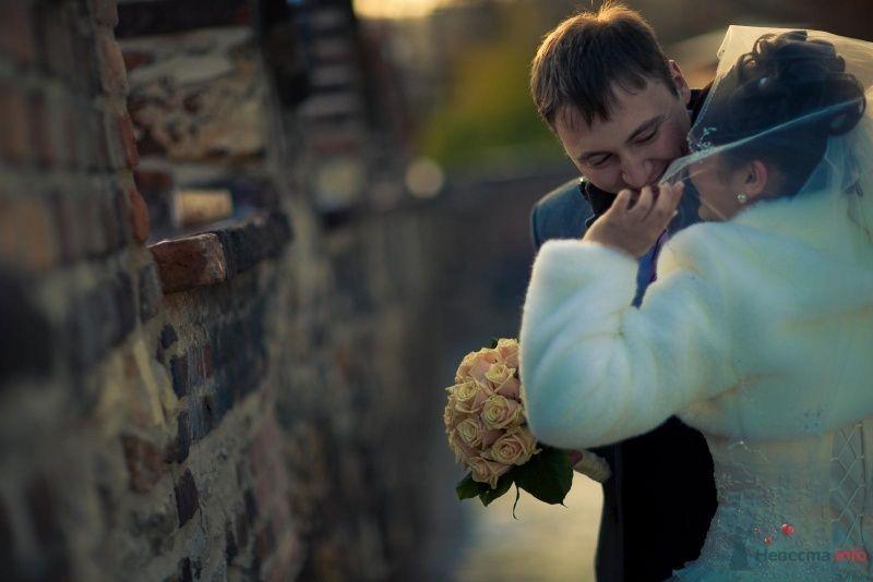 Моя Свадьба - фото 66666 Леди Di