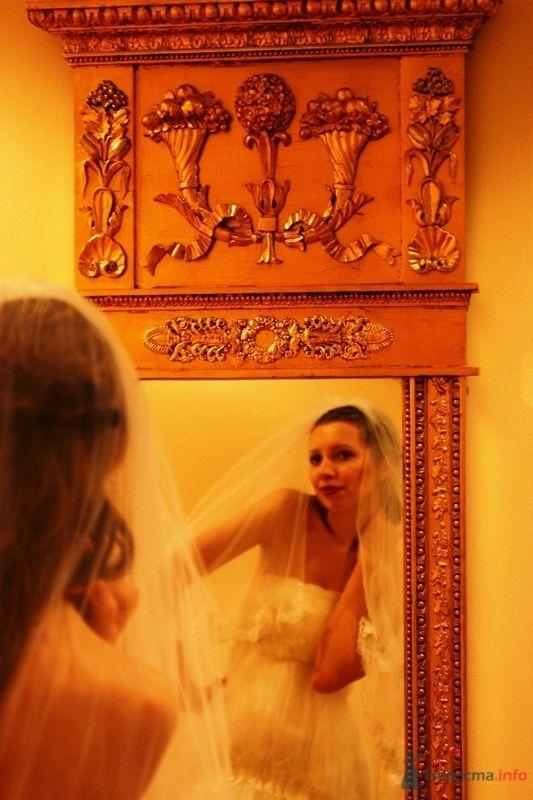 Фото 76708 в коллекции Post-wedding - Camel Maschine
