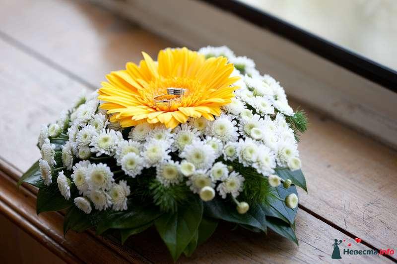 Подушечка для колец из живых цветов белой хризантемы, зелёных листьев и желтой герберы - фото 109584 Olga***