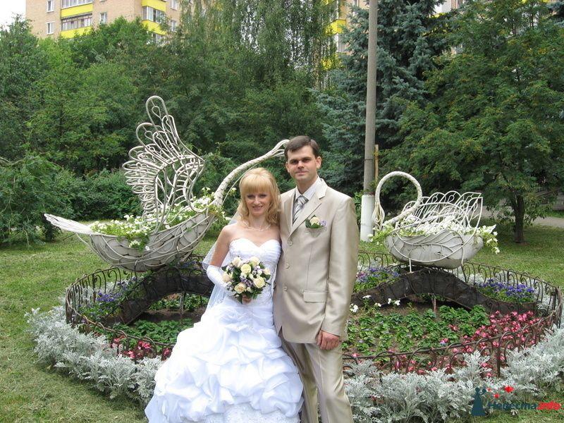 Фото 126230 в коллекции свадьба - Jenny