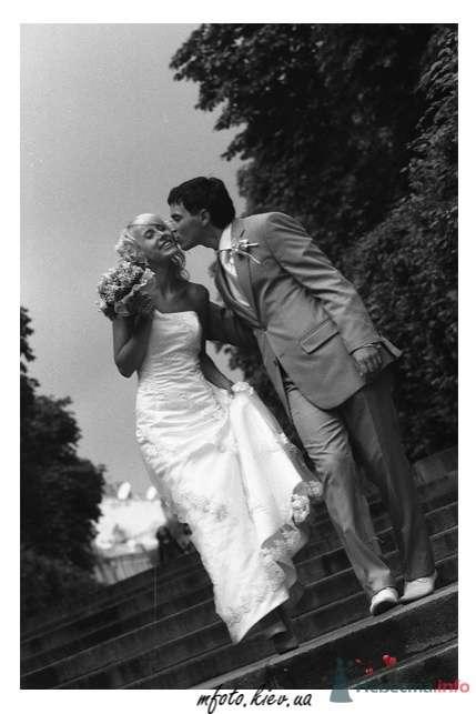 Свадебные фотографии - фото 45589 6091987