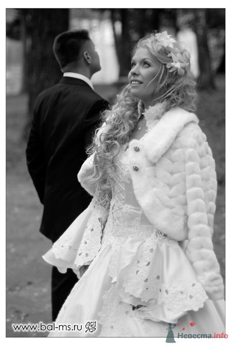 """Фото 45250 в коллекции Бал молодых семей - """"Все для свадьбы"""" - салон аксессуаров и услуг"""