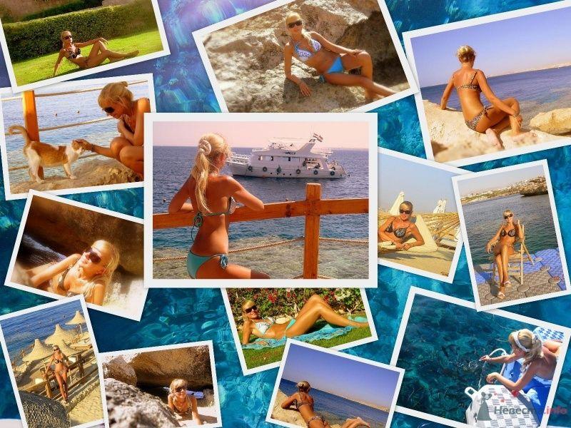 Фото 46331 в коллекции Мои фотографии - Калина