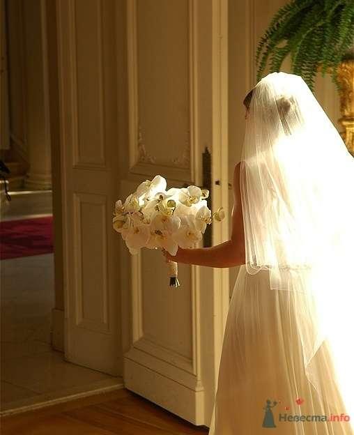 Фото 44144 в коллекции Недорогая свадебная флористика - Невеста01