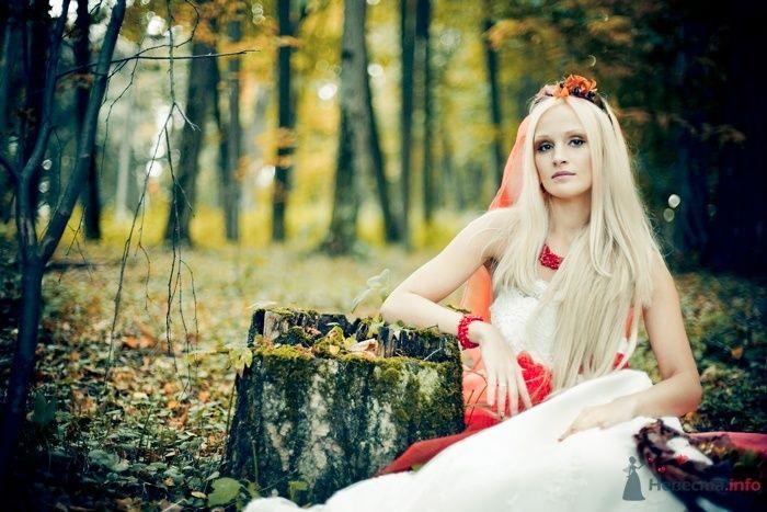 013 - фото 44292 Екатерина Алёшинская