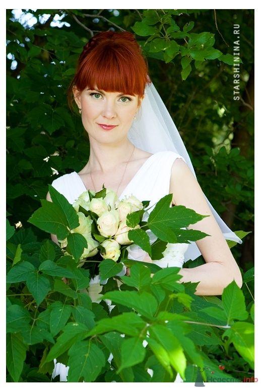 Фото 52271 в коллекции Свадьбы  2009-2011гг... - Фотограф Старшинина Мария