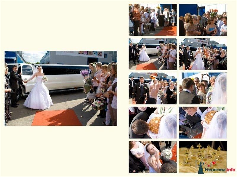 Фото 91174 в коллекции Свадебное фото - Фотограф Максим Корогодский