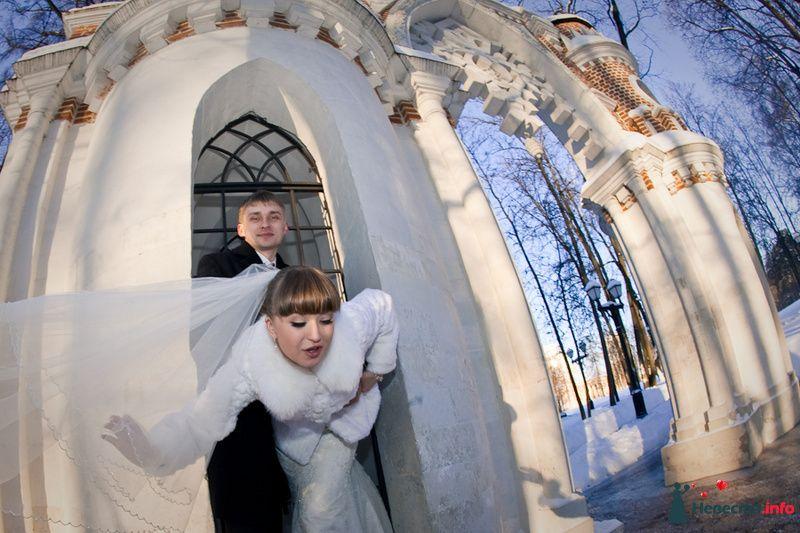 Фото 83157 в коллекции ЛИЧНОЕ - Фотограф Александра Глотова