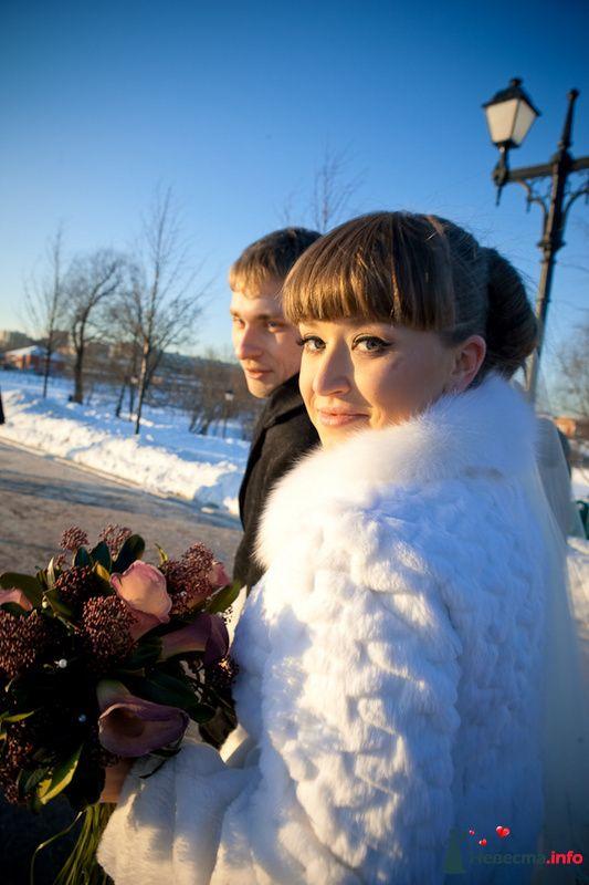 Фото 83160 в коллекции ЛИЧНОЕ - Фотограф Александра Глотова