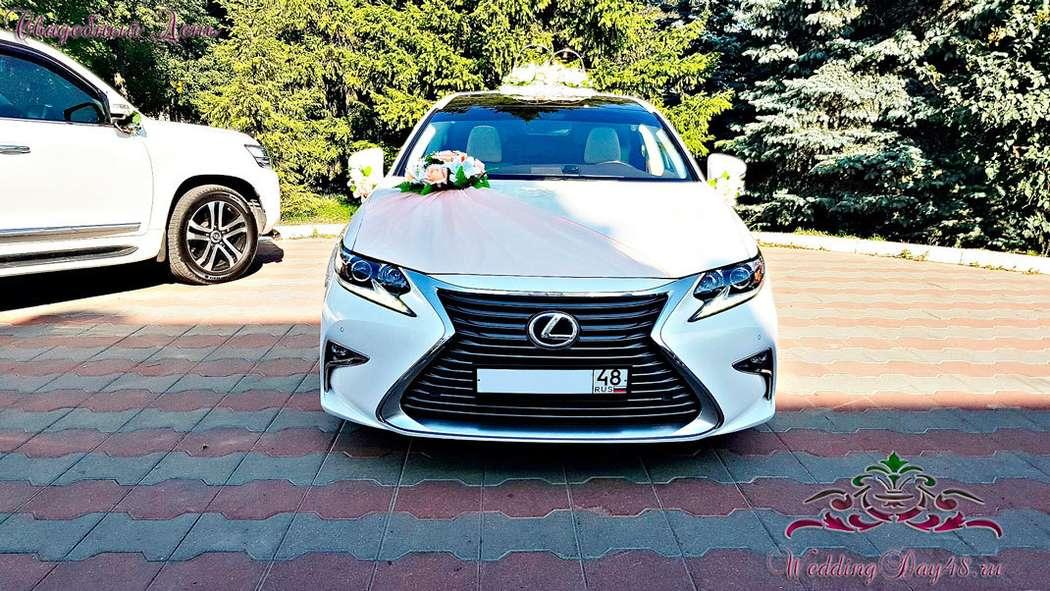 Фото 16326492 в коллекции Украшения для авто - Свадебный День - прокат свадебных автомобилей