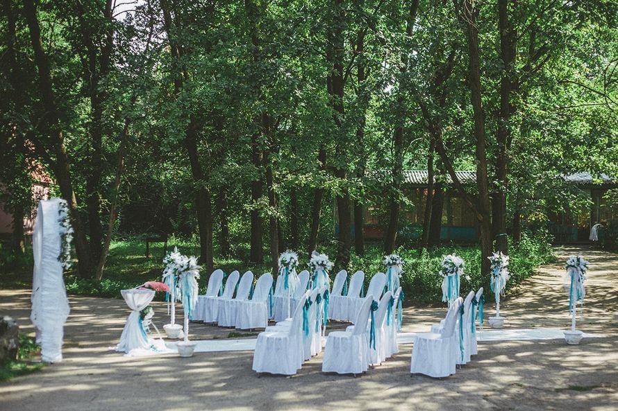 Фото 16575166 в коллекции Артем и Наталья - Evgeniy Komissarov - рhotography